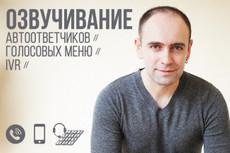 Озвучу текст для рекламы, сделаю аудиоролик, дикторскую начитку 19 - kwork.ru