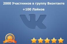 Настрою рекламною компанию В контакте (10 объявлений) 4 - kwork.ru