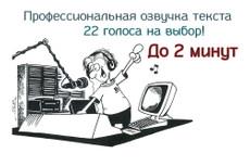 Запишу автоответчик, IVR, голосовое меню 16 - kwork.ru