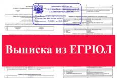 Срочная выписка из егрюл, егрип с ЭЦП 13 - kwork.ru