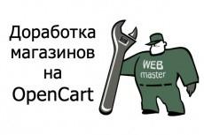 Установлю код, пиксель, скрипт статистики и аналитики на сайт 9 - kwork.ru