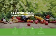 Разработка Landing Page под ключ с нуля 14 - kwork.ru