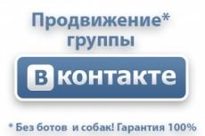300 подписчиков на паблик Вконтакте, без ботов и программ 16 - kwork.ru