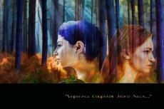 Сделаю профессиональную обложку для книги 22 - kwork.ru