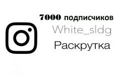 5000 русских подписчиков в Инстаграм. Раскрутка в instagram 16 - kwork.ru