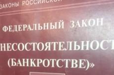 Составление заявления на банкротство физ. лица 5 - kwork.ru