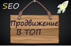 Поисковое продвижение 17 - kwork.ru