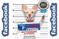 Подписчики  Instagram 9 - kwork.ru