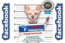 Просмотры видео на Facebook 3 - kwork.ru