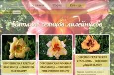 проведу технический анализ сайта 5 - kwork.ru