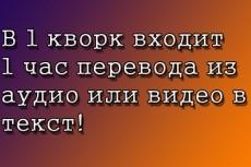 Перевод - транскрибация аудио, видео в текст 60 минут 7 - kwork.ru