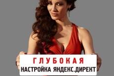 Настрою Яндекс Директ 6 - kwork.ru