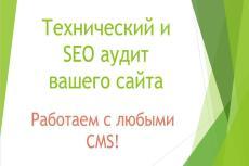 Полный анализ вашего сайта 20 - kwork.ru