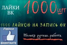 Безопасно 1000 Лайков ВК. Равномерное распределение. Ручная работа 9 - kwork.ru