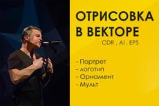 Отрисую в иллюстраторе 4 - kwork.ru