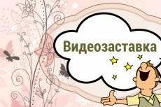 Видеоролик на заказ 7 - kwork.ru
