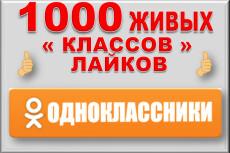 1000 друзей на профиль в Одноклассники. Без ботов и программ 11 - kwork.ru