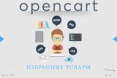 Установка и настройка WordPress 22 - kwork.ru