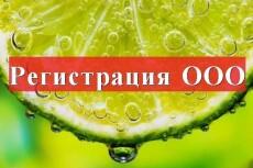 Подготовлю документы для регистрации ООО или ИП 9 - kwork.ru