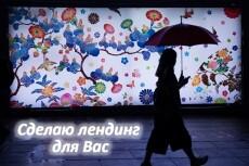 Сделаю в интернете страницу с видео о любом продающемся предмете, смотрите демо 21 - kwork.ru
