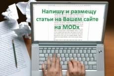 Размещение с оформлением 3х статей на ваш сайт - Видео, IMG, Теги 6 - kwork.ru