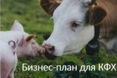 Бизнес-план 10 - kwork.ru