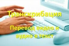Перевод из аудио и видео в текст с редактурой 7 - kwork.ru