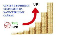 Качественное статейное продвижение. Более 60 трастовых ссылок 17 - kwork.ru