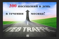 Увеличу количество уникальных посетителей от 50 до 500 в сутки + Бонус 15 - kwork.ru