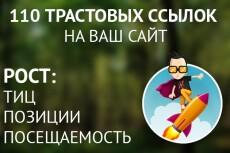 Профильный прогон по 25 трастовым сайтам. ТИЦ базы более 100000 14 - kwork.ru