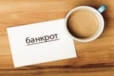 Сделаю заключение о признаках преднамеренного и фиктивного банкротства 11 - kwork.ru