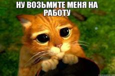 Менеджмент проектов 24 - kwork.ru