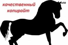 Сделаю качественный копирайт на тему красоты и здоровья для Вашего сайта 3 - kwork.ru
