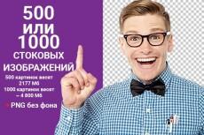 Исправление ошибок на WordPress, Bitrix, OpenCart 5 - kwork.ru