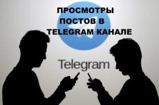 Авто просмотры постов в Телеграм 13 - kwork.ru