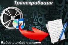 Транскрибация 50 минут аудио или видео в текст 20 - kwork.ru