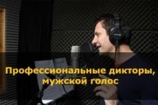 Диктор для YouTube канала 3 - kwork.ru
