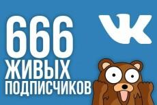 Подписчики в группу, паблик. Качество и Критерии 111 штук Вконтакте 19 - kwork.ru