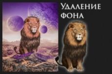 Удалю фон с картинки 22 - kwork.ru