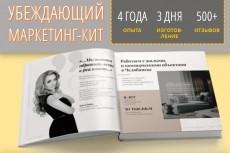 Оформлю маркетинг-кит 19 - kwork.ru