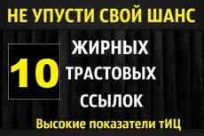 Создание и настройка сайта на Wordpress 3 - kwork.ru