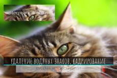 Портрет с стиле поп-арт 33 - kwork.ru