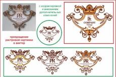 превращу картинку в вектор 16 - kwork.ru