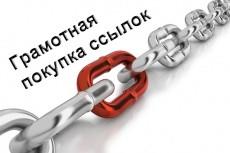 Консультация по оптимизации сайта 6 - kwork.ru