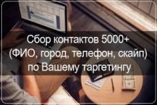 Соберу до 2000 Skype-контактов ЦА по Вашему тематическому запросу 5 - kwork.ru