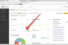 Настройка и установка счетчика Яндекс.Метрики 14 - kwork.ru