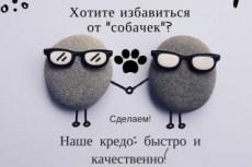 Удалю собачек из вашей группы Вконтакте 13 - kwork.ru