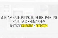 Сделаю видеомонтаж с ваших исходников 13 - kwork.ru