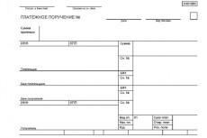 Составлю платежное поручение для оплаты (поставщики, ифнс, фонды) 6 - kwork.ru