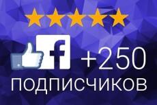 200 подписчиков с фильтрами в паблик Facebook. Не группа. Гарантия 18 - kwork.ru